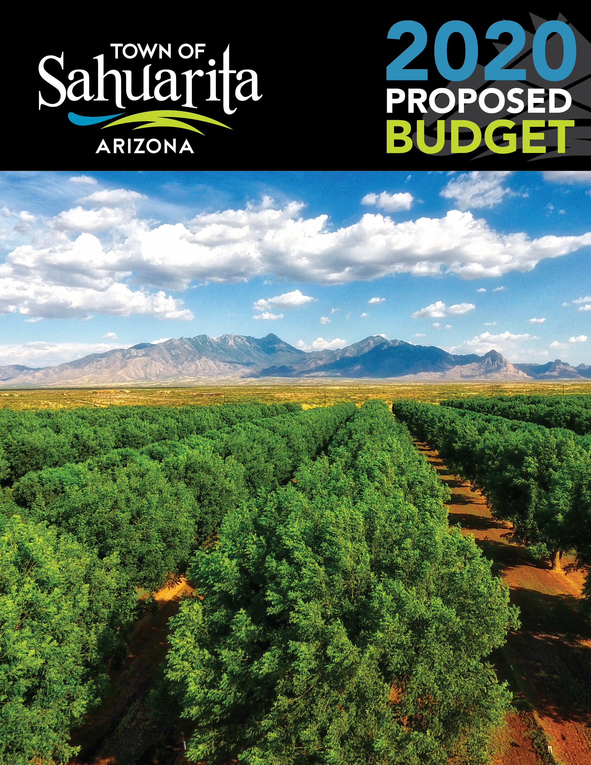 2020 budget cover depicting drone photograph of FICO pecan orchards