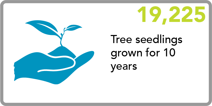EPA - Graphic - Tree Seedlings